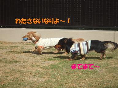 bloghinamone09.jpg