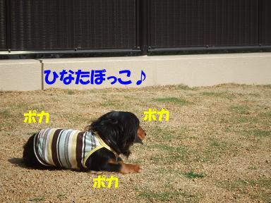 bloghinamone15.jpg