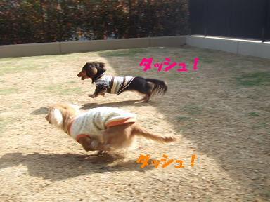 bloghinamone25.jpg