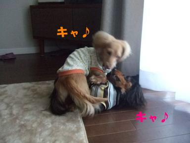bloghinamone34.jpg