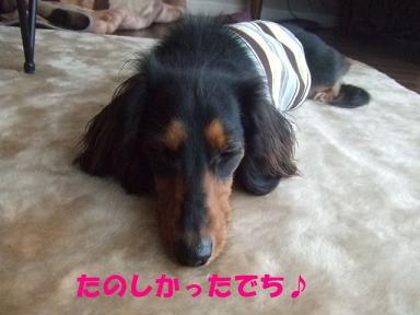 bloghinamone35.jpg