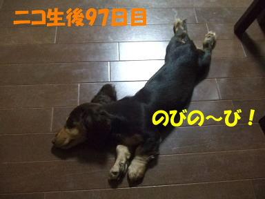 bloghitori01.jpg