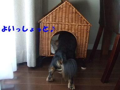 bloghome03.jpg