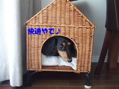bloghome05.jpg