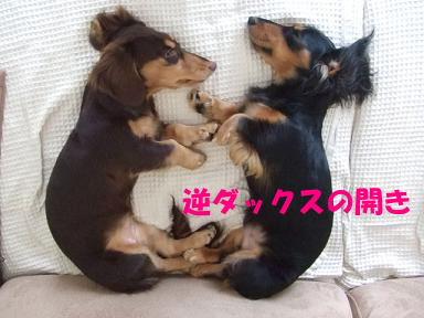 bloghome06.jpg