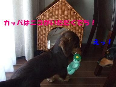 bloghome07.jpg