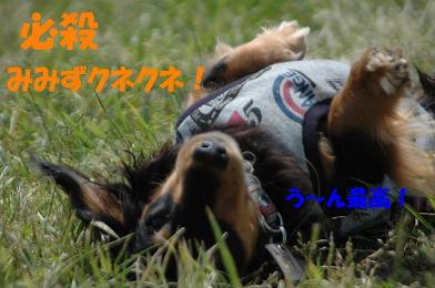 bloghure01.jpg
