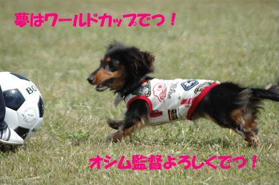 bloghure12.jpg