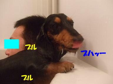 bloghuro09.jpg