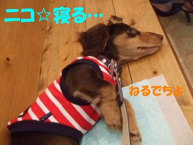 blogisora03.jpg