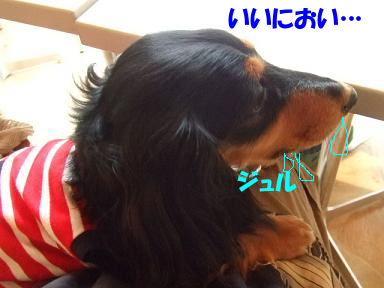 blogisora04.jpg