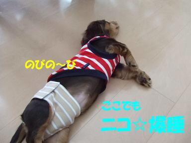 blogisora07.jpg