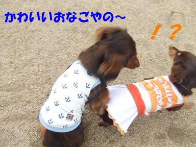 blogitami03.jpg