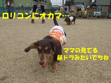 blogitami05.jpg