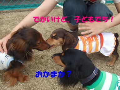 blogitami06.jpg