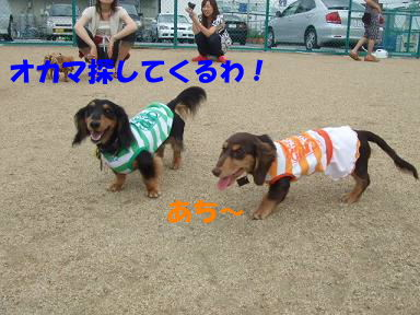 blogitami08.jpg
