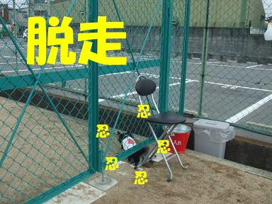 blogitami09.jpg