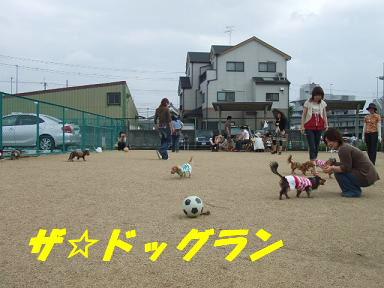 blogitami12.jpg
