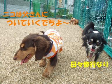 blogitami16.jpg