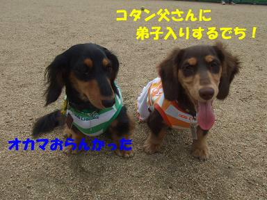 blogitami17.jpg