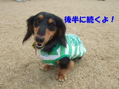 blogitami18.jpg