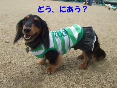 blogitami22.jpg