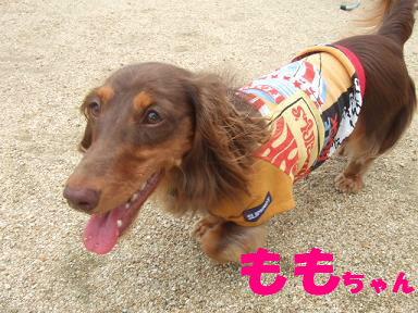 blogitami28.jpg