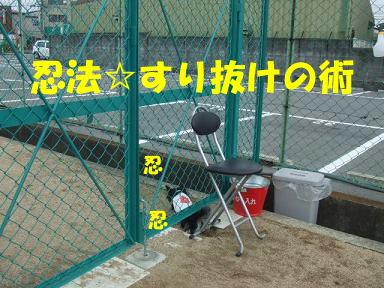 blogitami30.jpg