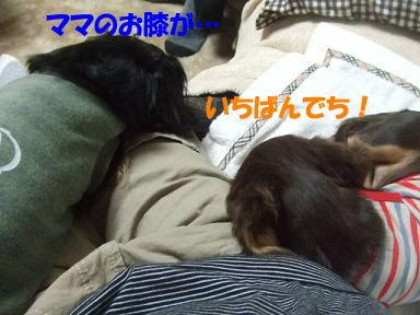 blogjikkanico04.jpg