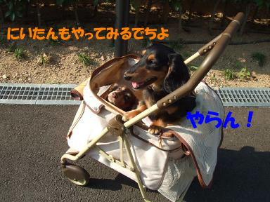 blogka-to03.jpg