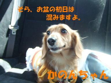 blogkawa02.jpg
