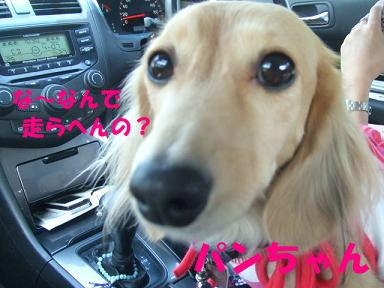 blogkawa03.jpg