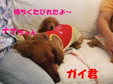 blogkawa05.jpg