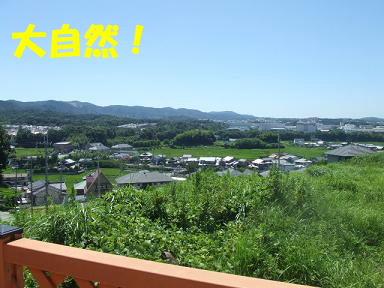 blogkawa08.jpg
