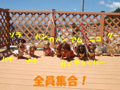 blogkawa10.jpg