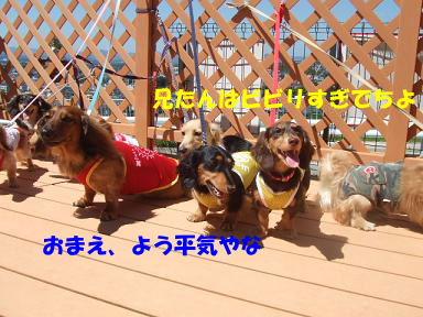 blogkawa11.jpg
