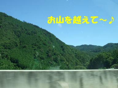 blogkawa13.jpg
