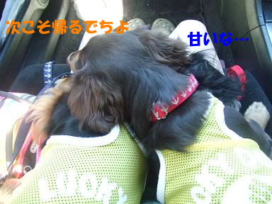 blogkawa14.jpg