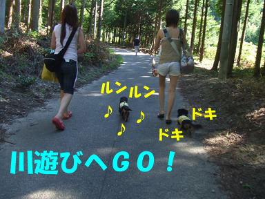blogkawa15.jpg