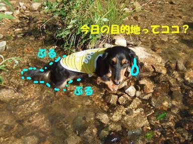 blogkawa17.jpg
