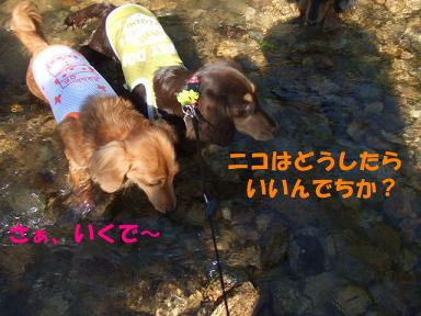 blogkawa18.jpg