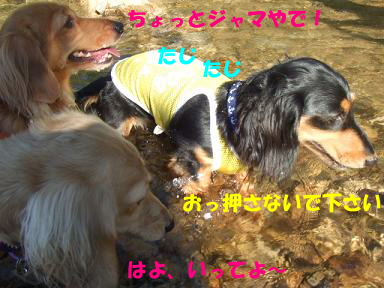 blogkawa19.jpg
