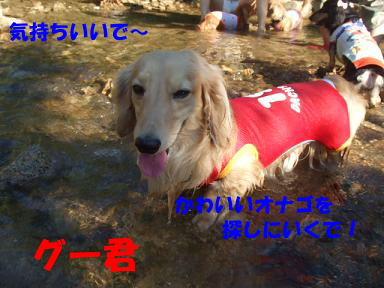 blogkawa21.jpg