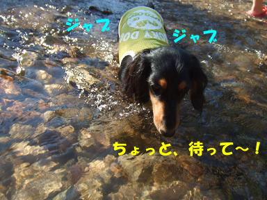 blogkawa22.jpg