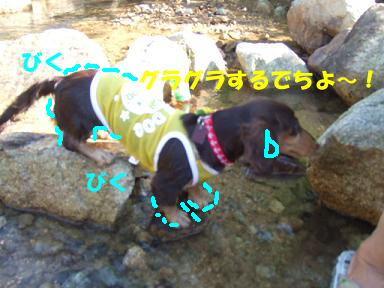 blogkawa26.jpg