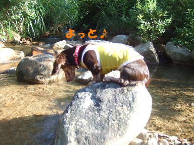 blogkawa33.jpg
