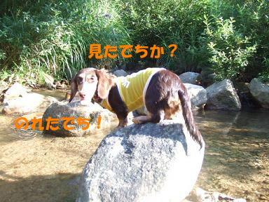 blogkawa34.jpg