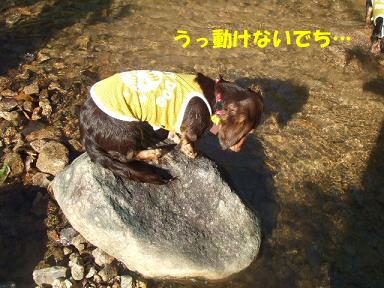 blogkawa35.jpg