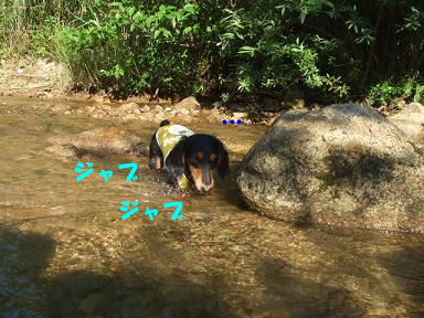 blogkawa36.jpg