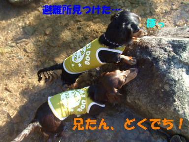 blogkawa39.jpg